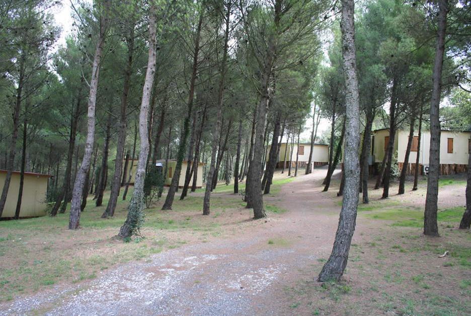 Colli Verdi - Vakantiehuisjes
