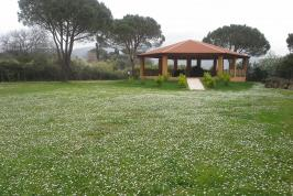 Grote tuin met overdekt terras