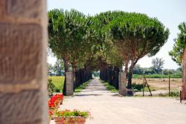 Agriturismo Toscane Cortona